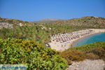 Vai Kreta | Lassithi Kreta | De Griekse Gids foto 17 - Foto van De Griekse Gids