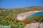 Vai Kreta | Lassithi Kreta | De Griekse Gids foto 18 - Foto van De Griekse Gids