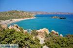 Vai Kreta | Lassithi Kreta | De Griekse Gids foto 25 - Foto van De Griekse Gids
