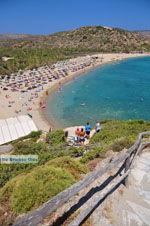 Vai Kreta | Lassithi Kreta | De Griekse Gids foto 36 - Foto van De Griekse Gids
