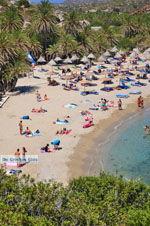 Vai Kreta | Lassithi Kreta | De Griekse Gids foto 37 - Foto van De Griekse Gids