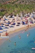 Vai Kreta | Lassithi Kreta | De Griekse Gids foto 38 - Foto van De Griekse Gids