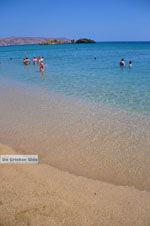 Vai Kreta | Lassithi Kreta | De Griekse Gids foto 50 - Foto van De Griekse Gids