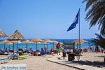 Vai Kreta | Lassithi Kreta | De Griekse Gids foto 55 - Foto van De Griekse Gids