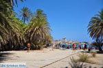 Vai Kreta | Lassithi Kreta | De Griekse Gids foto 58 - Foto van De Griekse Gids