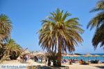 Vai Kreta | Lassithi Kreta | De Griekse Gids foto 60 - Foto van De Griekse Gids