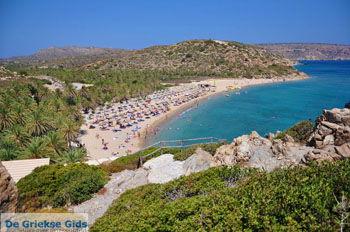 Vai Kreta | Lassithi Kreta | GriechenlandWeb.de foto 31 - Foto GriechenlandWeb.de