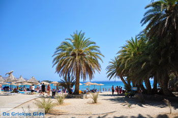 Vai Kreta | Lassithi Kreta | De Griekse Gids foto 57