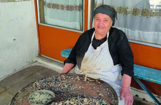 Mastiek op Chios