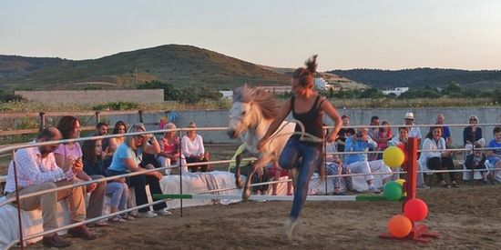 The Skyrian horse festival