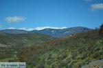 GriechenlandWeb.de De mooie natuur van Florina | Macedonie Griechenland | Foto 1 - Foto GriechenlandWeb.de