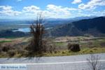 GriechenlandWeb.de De meren Zazari und Chimaditis Nimfeo in Florina | Macedonie foto 4 - Foto GriechenlandWeb.de