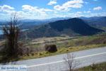 GriechenlandWeb.de De meren Zazari und Chimaditis Nimfeo in Florina | Macedonie foto 5 - Foto GriechenlandWeb.de