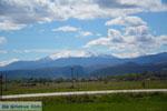Natuur onderweg van Amindeo naar Florina stad | Macedonie foto 1 - Foto van De Griekse Gids