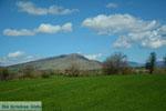 Natuur onderweg van Amindeo naar Florina stad | Macedonie foto 3 - Foto van De Griekse Gids