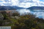 De meren van Prespes | Florina Macedonie | Griekenland foto 12 - Foto van De Griekse Gids