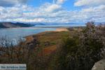 De meren van Prespes | Florina Macedonie | Griechenland foto 21 - Foto GriechenlandWeb.de
