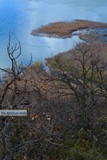 De meren van Prespes | Florina Macedonie | Griekenland foto 28 - Foto van De Griekse Gids