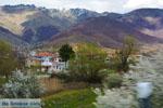 Dorpje Laimos bij Prespes   Florina Macedonie   Foto 1 - Foto van De Griekse Gids