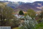 Dorpje Laimos bij Prespes | Florina Macedonie | Foto 2 - Foto van De Griekse Gids