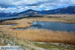 Bij de meren van Prespes | Florina Macedonie | Griekenland foto 42 - Foto van De Griekse Gids