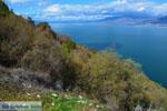 Bij de meren van Prespes | Florina Macedonie | Griechenland foto 45 - Foto GriechenlandWeb.de