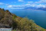 GriechenlandWeb.de Bij de meren van Prespes | Florina Macedonie | Griechenland foto 46 - Foto GriechenlandWeb.de