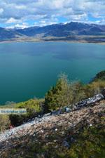 Bij de meren van Prespes | Florina Macedonie | Griekenland foto 48 - Foto van De Griekse Gids