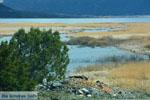 Bij de meren van Prespes | Florina Macedonie | Griekenland foto 50 - Foto van De Griekse Gids