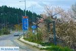 Grevena | Macedonie Griekenland | De Griekse Gids foto 26 - Foto van De Griekse Gids
