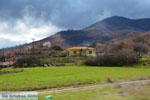 GriechenlandWeb.de Onderweg van Prespes in Florina naar Kastoria | Macedonie Griechenland foto 2 - Foto GriechenlandWeb.de