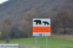 JustGreece.com Onderweg van Prespes in Florina naar Kastoria | Macedonie Griekenland foto 4 - Foto van De Griekse Gids