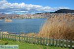 Kastoria | Macedonie Griekenland | Foto 12 - Foto van De Griekse Gids