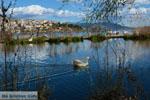 Kastoria | Macedonie Griekenland | Foto 31 - Foto van De Griekse Gids