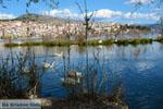 Kastoria | Macedonie Griekenland | Foto 32 - Foto van De Griekse Gids