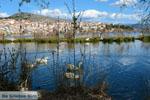 JustGreece.com Kastoria | Macedonie Griekenland | Foto 33 - Foto van De Griekse Gids
