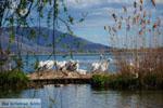 Kastoria | Macedonie Griekenland | Foto 38 - Foto van De Griekse Gids