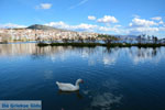 Kastoria | Macedonie Griekenland | Foto 43 - Foto van De Griekse Gids