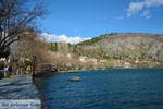 Kastoria | Macedonie Griekenland | Foto 47 - Foto van De Griekse Gids