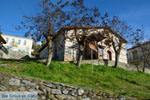 JustGreece.com Kastoria | Macedonie Griekenland | Foto 70 - Foto van De Griekse Gids