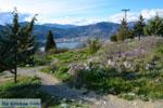 Kastoria | Macedonie Griekenland | Foto 72 - Foto van De Griekse Gids