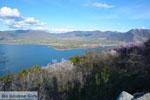 GriechenlandWeb Kastoria | Macedonie Griechenland | Foto 77 - Foto GriechenlandWeb.de