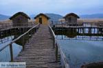 Dispilio Kastoria | Macedonie Griekenland | Foto 7 - Foto van De Griekse Gids