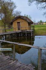 GriechenlandWeb.de Dispilio Kastoria | Macedonie Griechenland | Foto 10 - Foto GriechenlandWeb.de
