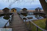 GriechenlandWeb.de Dispilio Kastoria | Macedonie Griechenland | Foto 11 - Foto GriechenlandWeb.de