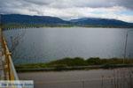 Polifitos-meer Kozani | Macedonie Griekenland | De Griekse Gids foto 6 - Foto van De Griekse Gids