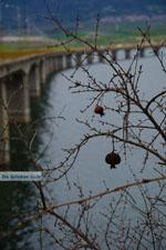 Polifitos-meer Kozani | Macedonie Griekenland | De Griekse Gids foto 9 - Foto van De Griekse Gids