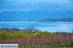 Polifitos-meer Kozani | Macedonie Griekenland | De Griekse Gids foto 11 - Foto van De Griekse Gids