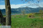 Polifitos-meer Kozani | Macedonie Griekenland | De Griekse Gids foto 13 - Foto van De Griekse Gids