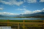 GriechenlandWeb Polifitos-meer Kozani | Macedonie Griechenland | GriechenlandWeb.de foto 16 - Foto GriechenlandWeb.de